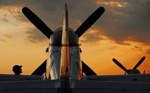 P-51 Mustangs, Warbird Alley, Oshkosh